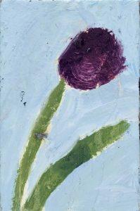 Peter Bosshart, deep-purple, 2020, Öl/Lw, 0 x 20 cm